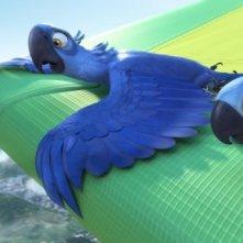 Due protagonisti di Rio in 3D in volo su Rio de Janeiro