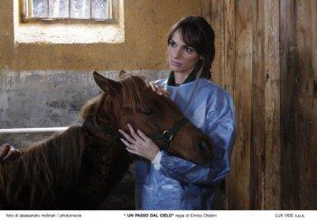 Gaia Bermani Amaral è una veterinaria nella serie Un passo dal cielo
