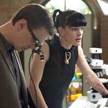 Sean Murray e Pauley Perrette in una scena dell'episodio Tell-All di NCIS