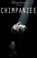 La locandina di Chimpanzee