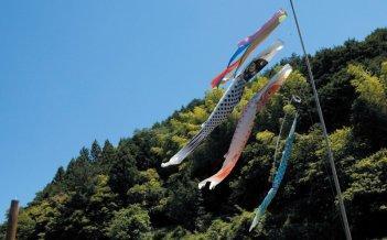 Una colorata immagine del film Hanezu no Tsuki di Naomi KAWASE