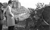 Pasolini, Risi e Sordi in mostra a Parlare di Cinema a Castiglioncello