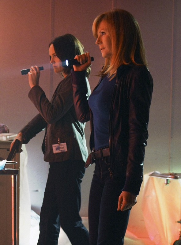 Jorja Fox E Marg Helgenberger In Una Scena Dell Episodio Cello And Goodbye Di Csi Scena Del Crimine 205462