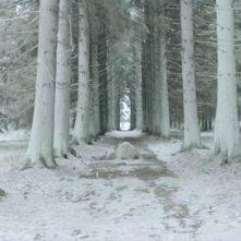 Una sequenza del film Into Eternity, diretto dall'attore Michael Madsen