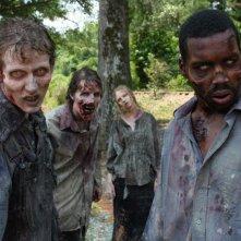 The Walking Dead: una delle prime immagini della seconda stagione