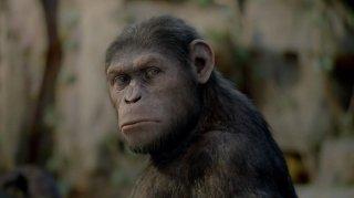 L'alba del pianeta delle scimmie: Caesar è lo scimpanzè creato dalla Weta Digital