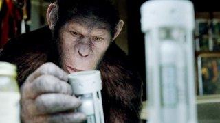 L'alba del pianeta delle scimmie: Caesar in una sequenza del film