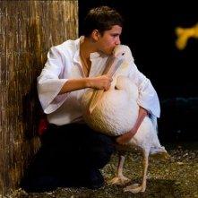 Nicostratos the Pelican: Thibault Le Guellec e uno dei suoi adorati pellicani