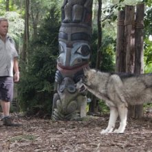 Kevin James in una sequenza del film The Zookeeper (Il signore dello zoo)