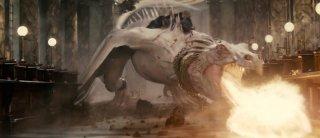 Harry Potter e i doni della morte - parte 2: una immagine del malefico drago