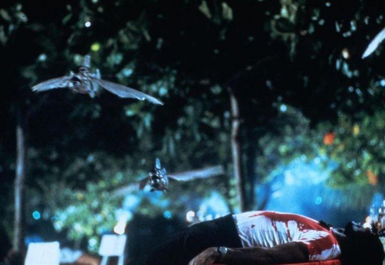 I Pesci Killer Volano Nel Film Pira A Paura 209756