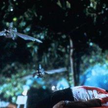 I pesci killer volano nel film Piraña paura