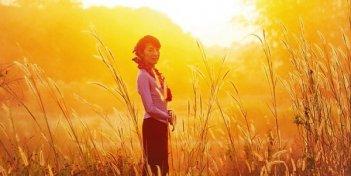 Una suggestiva immagine di Michelle Yeoh in mezzo al grano in The Lady
