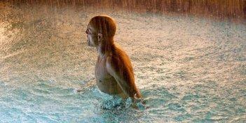 Woody Harrelson immerso nell'acqua in una drammatisca scena di Rampart