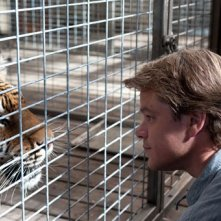 Matt Damon alle prese con una tigre in We Bought a Zoo