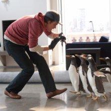 Jim Carrey e i Pinguini di Mister Popper