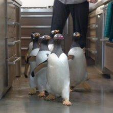 Una immagine del film i Pinguini di Mister Popper.