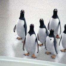Una sequenza del film i Pinguini di Mister Popper