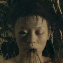 L'orribile apparizione del fantasma dell'horro giapponese Exte: Hair Extensions di Sion Sono
