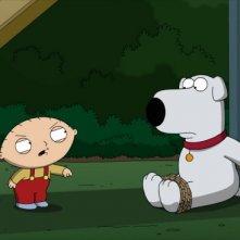 Stewie e Brian in una scena di New Kidney in Town della serie-tv I Griffin