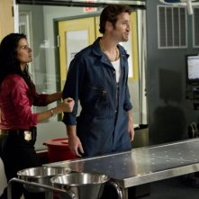Angie Harmon in una scena dell'episodio Sailor Man di Rizzoli & Isles