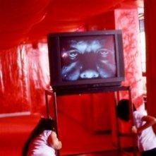 Un'inquietante immagine del film di Sion Sono Strange Circus