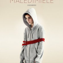 La locandina di MalediMiele