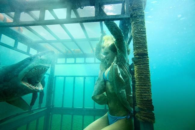 Shark Night 3D Sara Paxton In Una Scena 213373