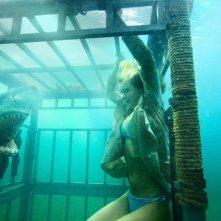 Shark Night 3D: Sara Paxton in una scena