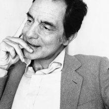 Una foto di Italo Calvino