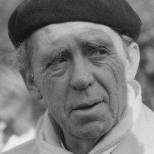 Una foto di Heinrich Böll