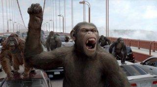 L'alba del pianeta delle scimmie: un primo piano di una delle scimmie create dalla Weta