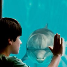 L'incredibile storia di Winter il delfino: Nathan Gamble in una scena