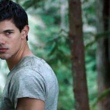 The Twilight Saga: Breaking Dawn - Parte I, un bel primo piano di Taylor Lautner