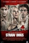 Straw Dogs: poster internazionale