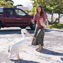 Ashley Judd in una divertentissima scena tratta dal film L'incredibile storia di Winter il delfino