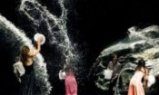 Roma 2011: Pina 3D, Project Nim e Bobby Fisher presto in Dvd