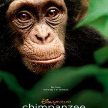 Chimpanzee: nuovo poster