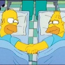 "Una sequenza dell'episodio Homer Simpson in ""Problemi di reni ( Stagione 10 - I Simpson )"