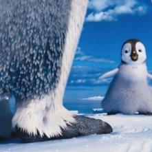Happy Feet 2 in 3D, il piccolo pinguino Erik si rifiuta di ballare in una scena del film