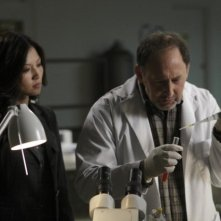 Fringe: Michelle Krusiec ed Arye Gross nell'episodio Novation