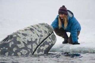 Drew Barrymore insieme ad una delle balene protagoniste del film in una scena di Qualcosa di straordinario