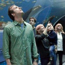 Ryan Reynolds in visita all'acquario in una scena di Cambio Vita