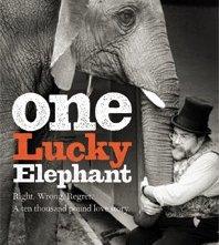 One Lucky Elephant: la locandina del film
