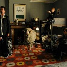 Tre uomini e una pecora: una concitata divertente scena del film