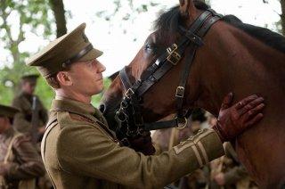 Tom Hiddleston accarezza lo splendido cavallo protagonista del film War Horse