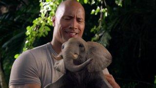 Dwayne Johnson stringe un piccolo elefante in una scena di Viaggio nell'isola misteriosa