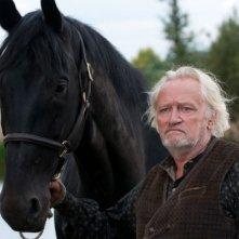 Lo sguardo fiero di Niels Arestrup e del suo cavallo in una scena di War Horse