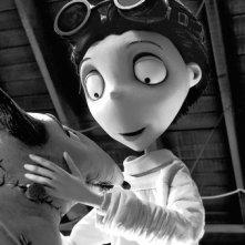 Una delicata immagine di Frankenweenie, nuovo capolavoro animato in stop motion diretto da Tim Burton