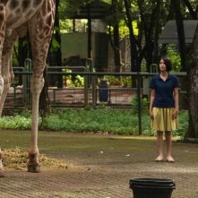 Postcards From The Zoo: Ladya Cheryl in una scena tratta dal film